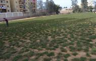 وفاءً بالوعد ... الكلية تجهز ملعبًا لكرة القدم لطلابها